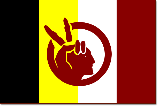 Bandera del American Indian Movement